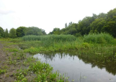 Bourne Valley Sustainable Drainage 2000-present day