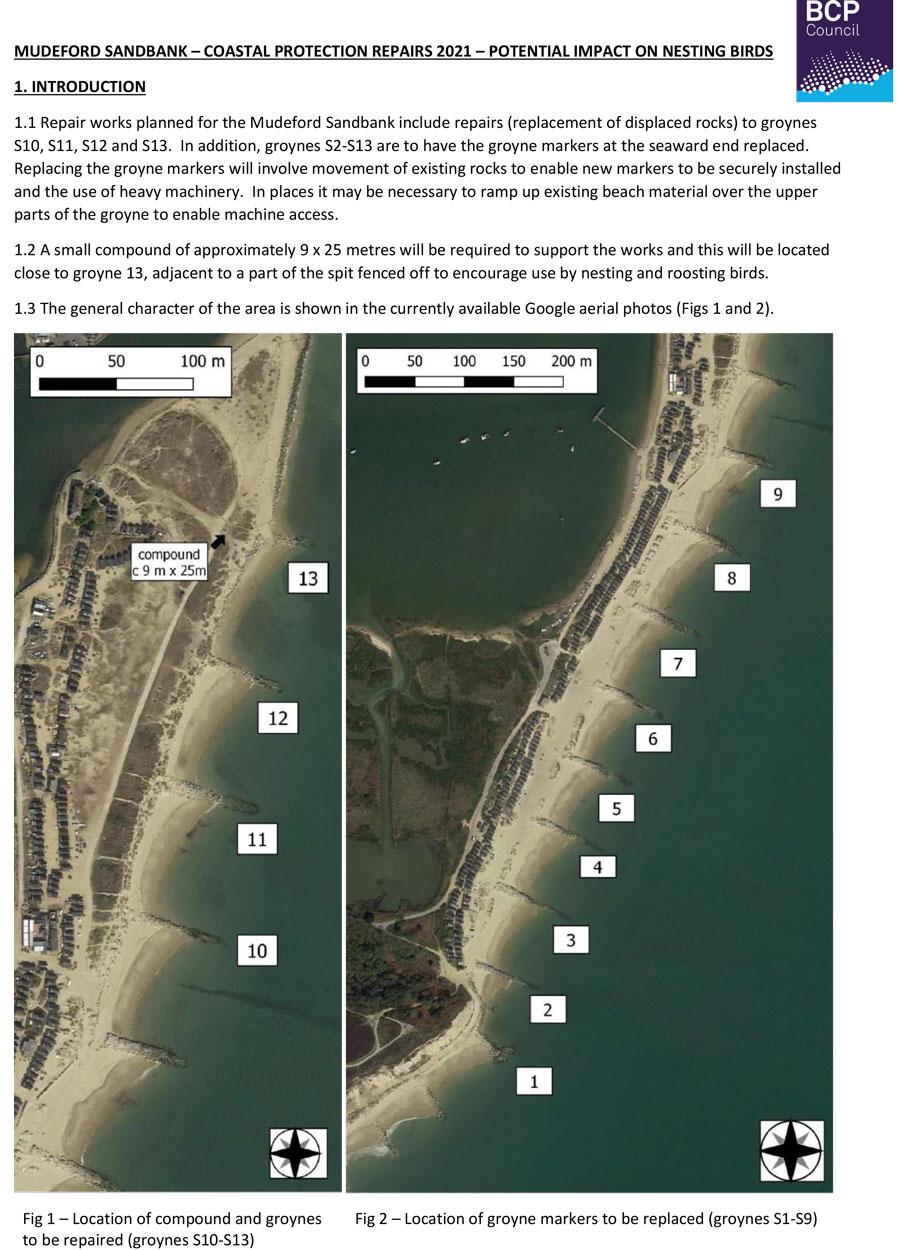 Nesting bird assessments May 2021